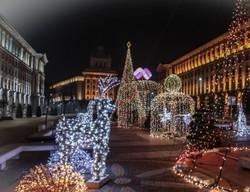 Елхата в София грейва с 30 000 лампички