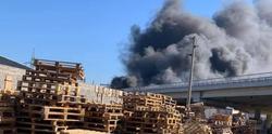 Проверяват опожарения магистрален мост при Дупница