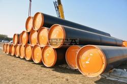 PM Borissov: Bulgaria, Serbia Should Complete Balkan Stream Pipeline Construction Simultaneously