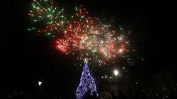 Елхата в София светва на 1 декември