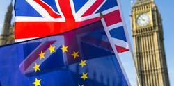 Над 110 000 българи зависят от британските избори