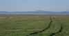 А. Загорски: Арендаторите искат да направят собствениците на земя васали