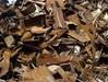 Затягат режима за продажби на отпадъци от черни и цветни метали