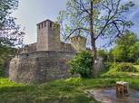 Крепост Баба Вида